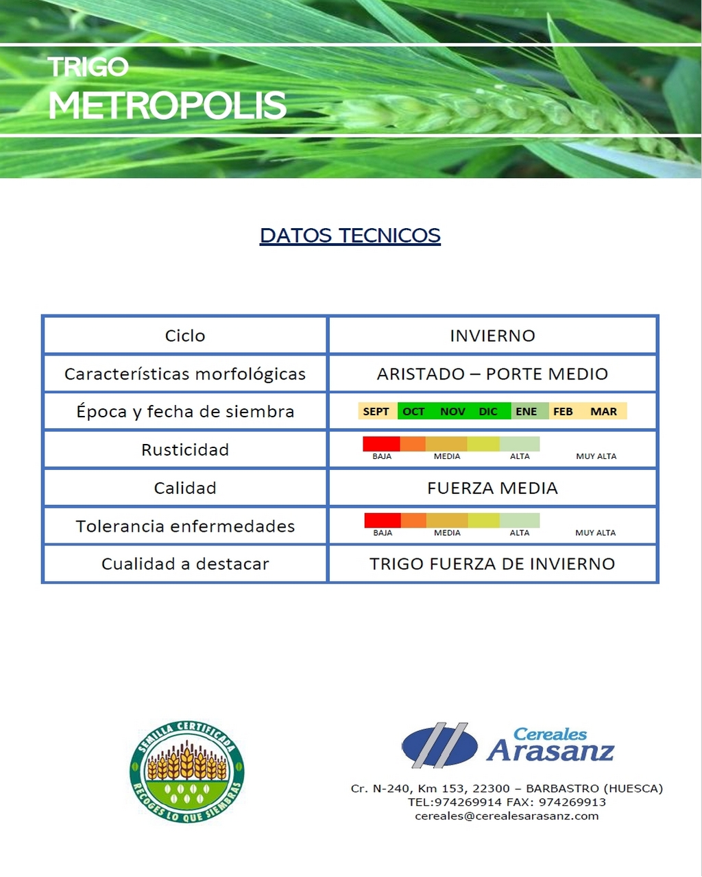Trigo Metropolis