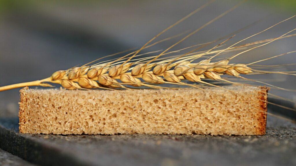 La nueva ley de la cadena alimentaria encara la recta final