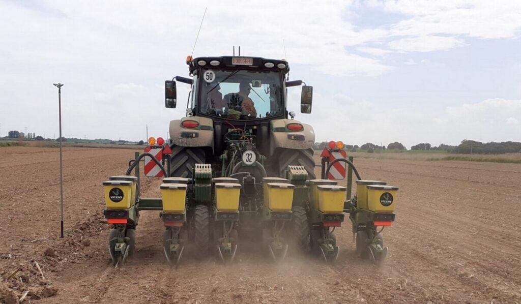 Reglas básicas para realizar una buena siembra de maíz